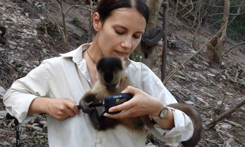 Filmujące zwierzęta