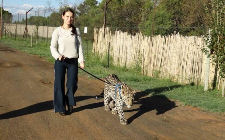 Z miłości do zwierząt